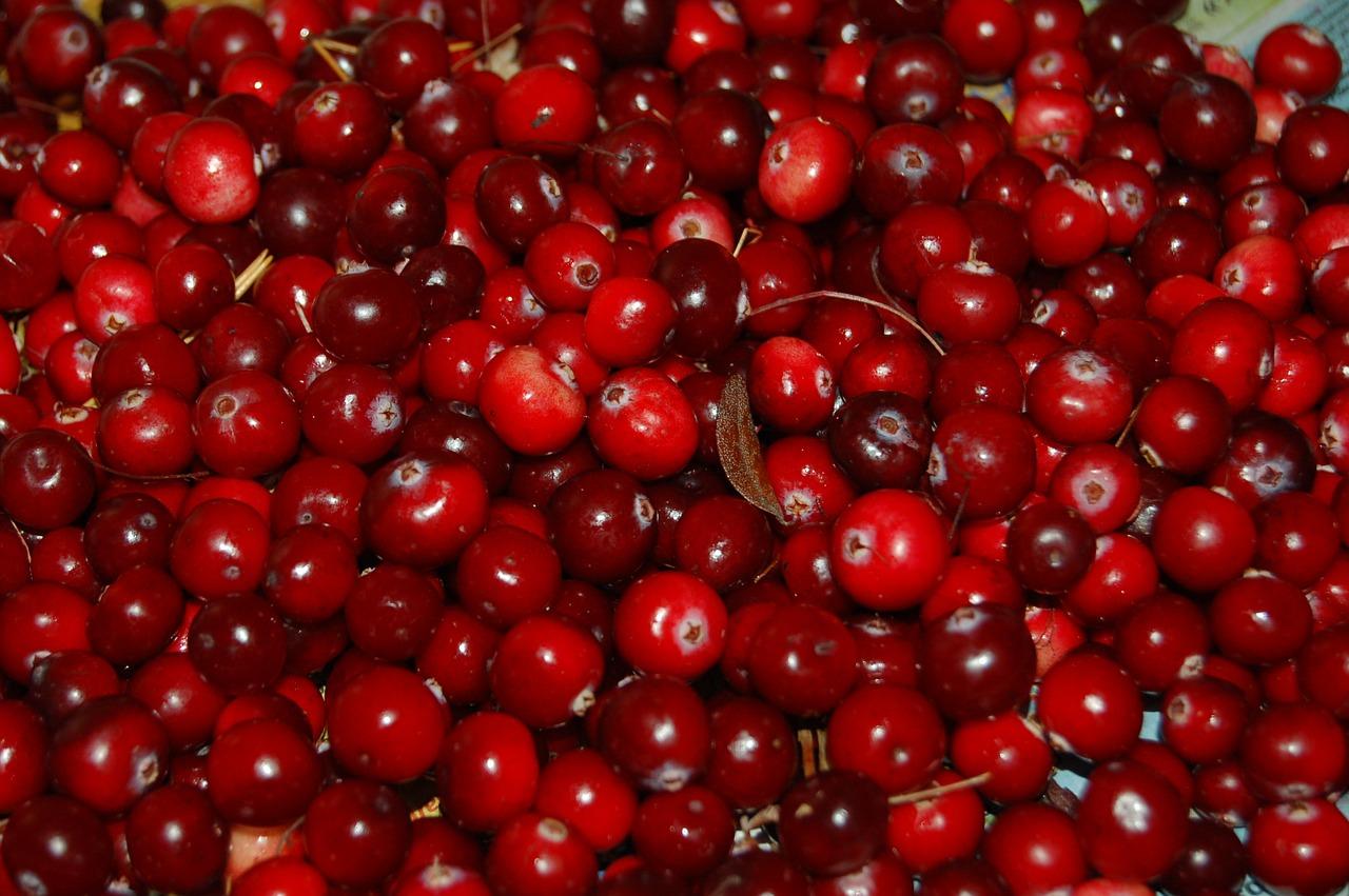 Cranberry แครนเบอร์รี่